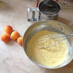 crostata soffice alle albicocche