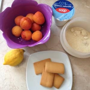 crema di yogurt e albicocche