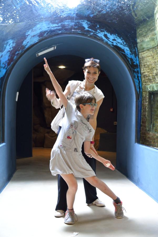 acquario di livorno - il tunnel